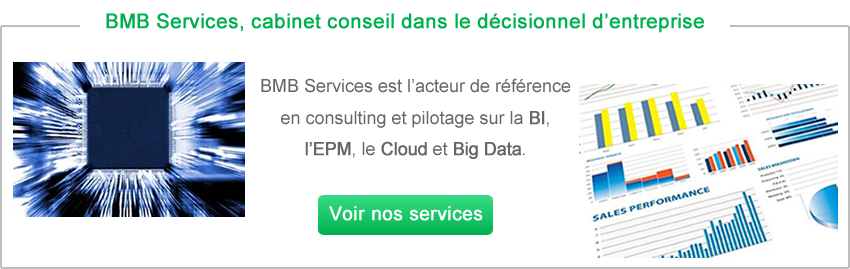 Conseil big data Paris